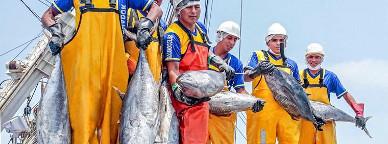 Ministerio de la Producción informa sobre la revisión del DS 021-2017 que establece disposiciones para el abastecimiento a la industria conservera del atún