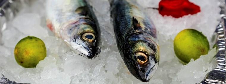 Ministerio de la Producción establece cuotas de pesca para los recursos jurel y caballa correspondientes al 2018