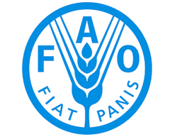 FAO_png.png